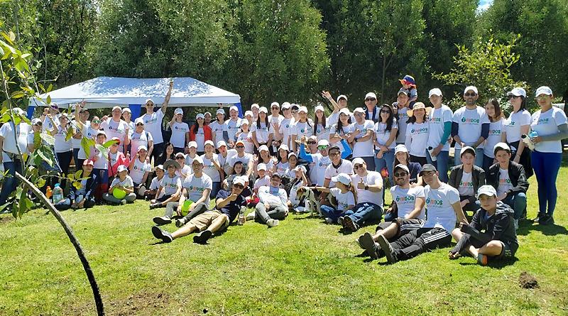 Voluntarios recuperan 50 árboles en Quito y limpian de basura «Playas»