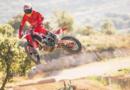 MotoGP: Los Márquez vuelven a las motos y otros se reactivan