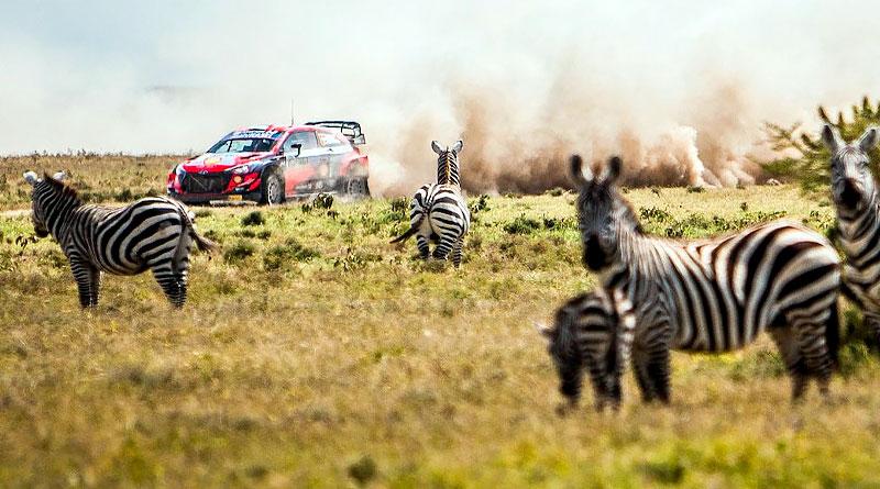 Ogier gana el Safari Rally de Kenia tras abandono de Neuville